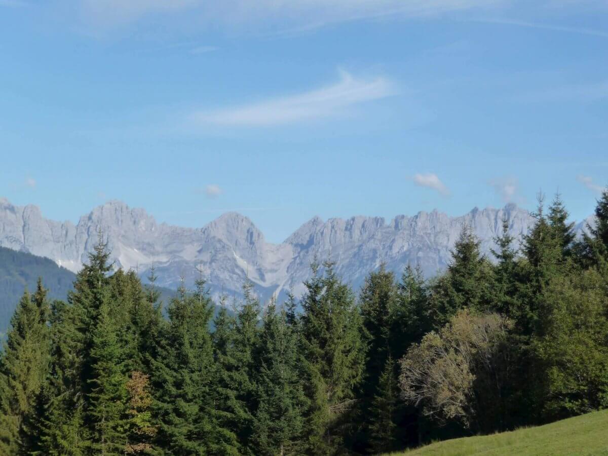 Berghütte Kitzbühel - Panorama